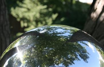 Tree Reflected