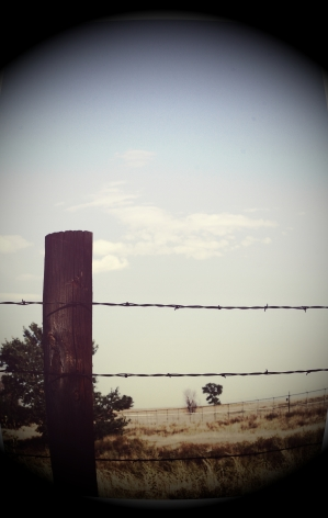 Fence post wires